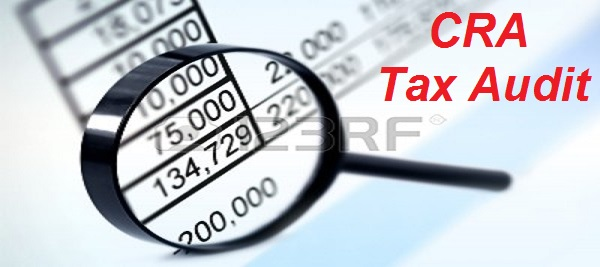 What Are the Best Strategies to Handle A Tax Audit