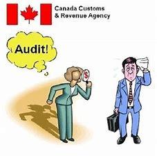 Audit Defence